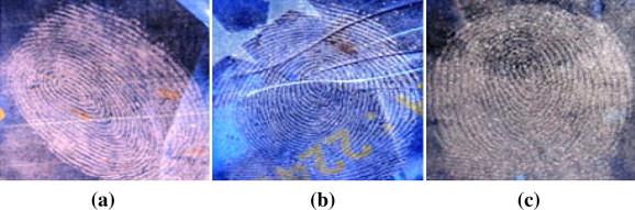 Résultats comparatifs de visualisation d'empreintes latentes sur du papier cadeau plastifié avec  a) silica gel b) poudre blanche c) poudre grise claire