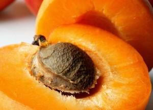On  trouve le cyanure  à l'état naturel dans les noyaux de pêches, d'abricots et de nectarines